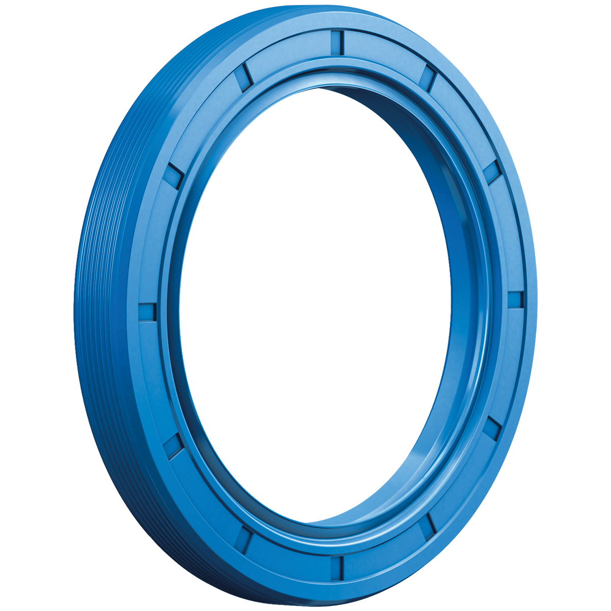 Simmerrings® / Radial Shaft Seals